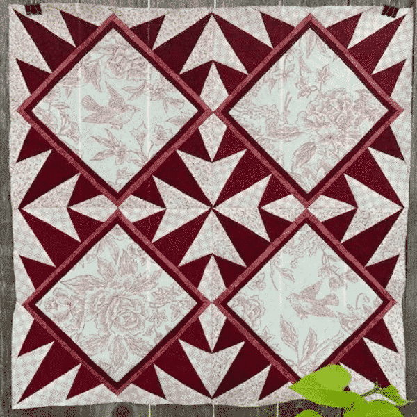 Toile Stars block by janette bibby for solidarity block project